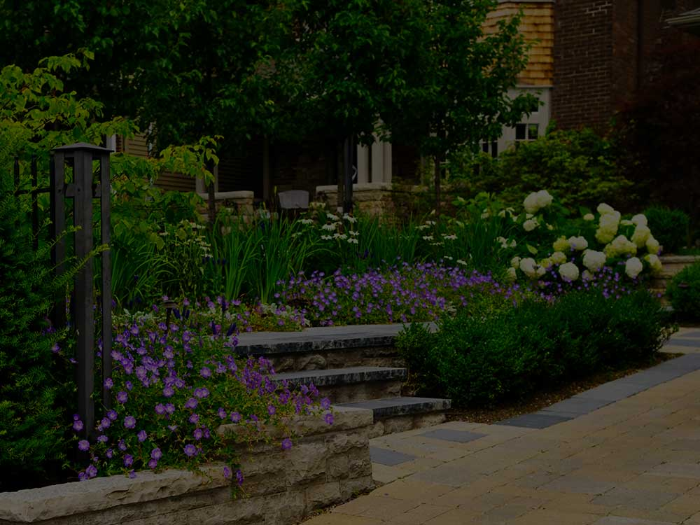 Jonesville Commercial Garden Design