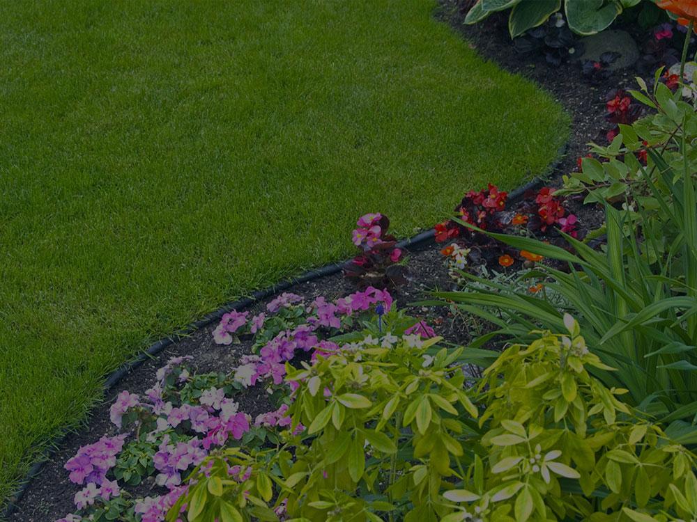 Gainesville Garden Design