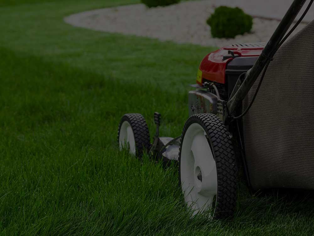 Jonesville Lawn Mowing