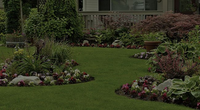 Newberry Landscape Design