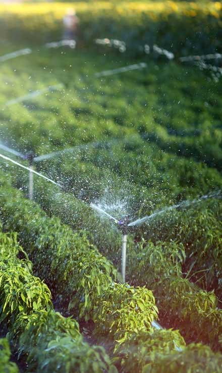 J.W. Lawncare Inc Irrigation System Repair
