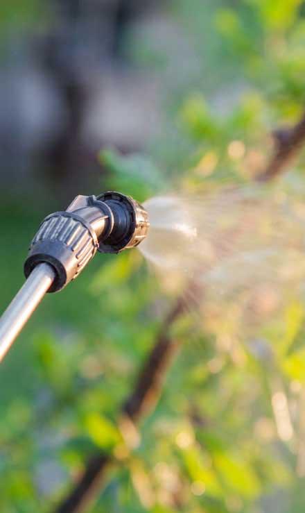 J.W. Lawncare Inc Lawn Pest Control